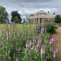 The Ultimate Guide to a Family Trip to Monticello