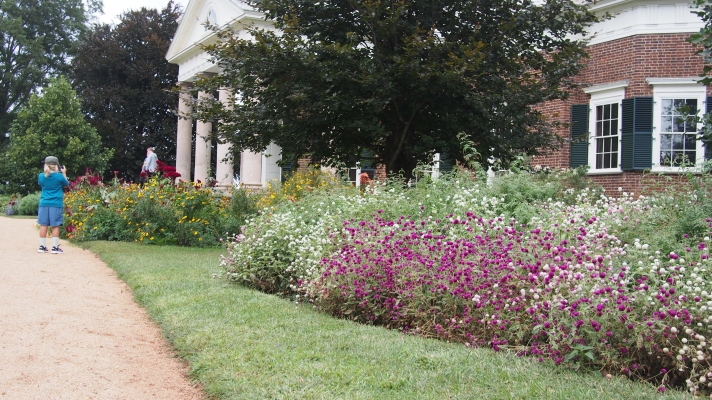 The Many Flowers in the Garden at Monticello
