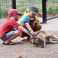 Encountering Animals at Tanganyika Wildlife Park in Kansas